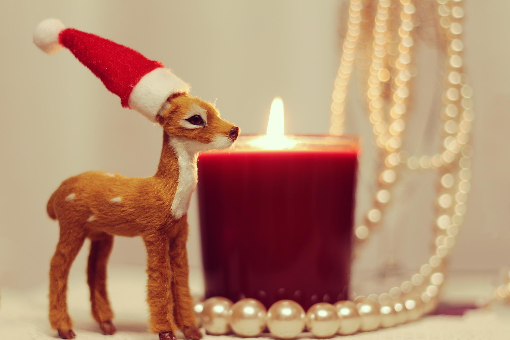 クリスマスは復縁できるチャンス!事前の準備が何より重要